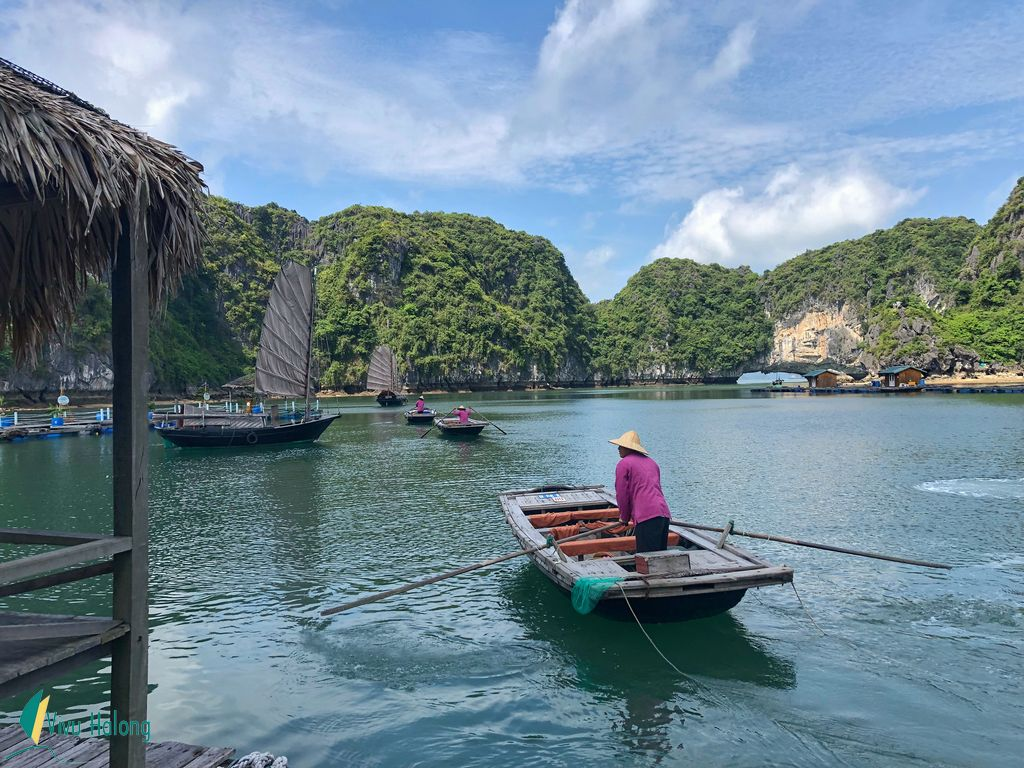 Tham quan làng chài vịnh Hạ Long