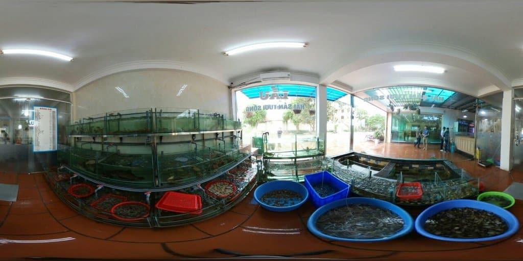 Hải sản Quảng Ninh 100% tươi ngon