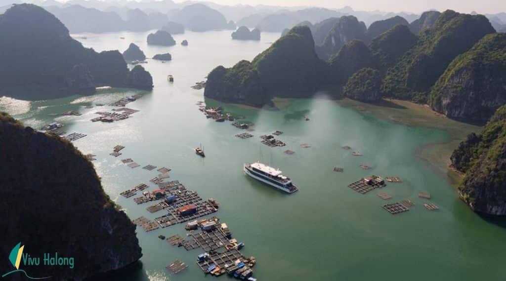 Du thuyền Jade Sails Hạ Long