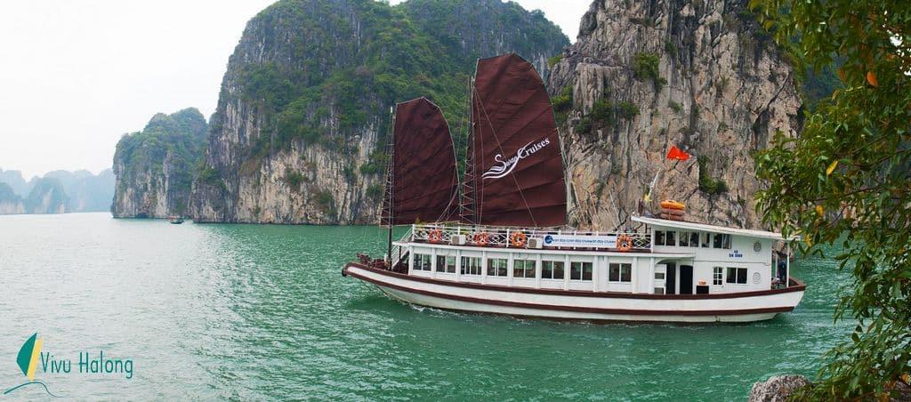 Tour Bái Tử Long 1 ngày trên tàu Swan
