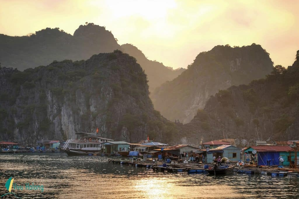 Local floating villages on Cat Ba island