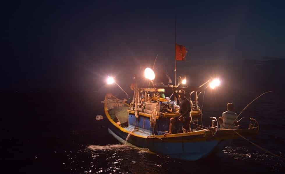 Tour câu mực đêm trên vịnh Hạ Long