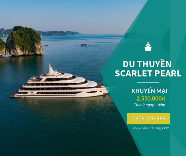 Du thuyền Scarlet Pearl
