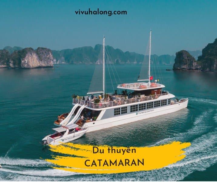 Du thuyền Catamaran thăm Vịnh Lan Hạ 1 ngày