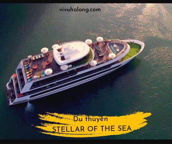 Du thuyền Stellar of the Sea