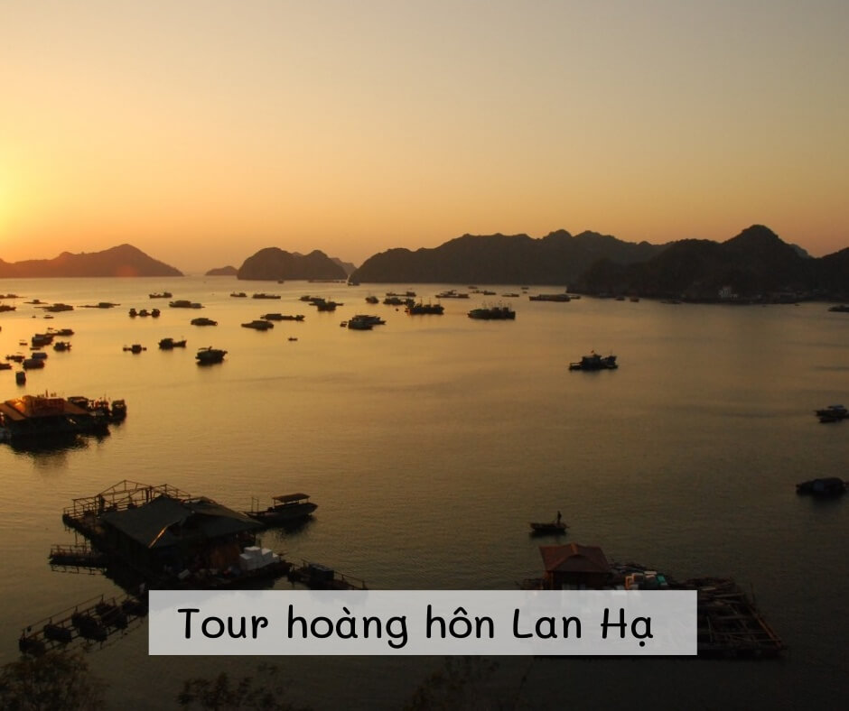 Tour ngắm hoàng hôn Vịnh Lan Hạ