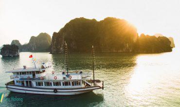 Du thuyền Sen Hạ Long dành cho tour 1 ngày