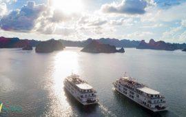 [Review] Du thuyền Paradise Hạ Long