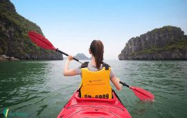 How to choose the best Halong Bay 2 days 1 night cruise